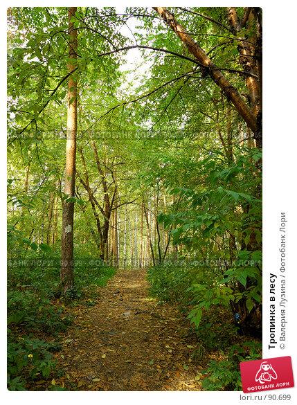 Тропинка в лесу, фото № 90699, снято 22 сентября 2007 г. (c) Валерия Потапова / Фотобанк Лори