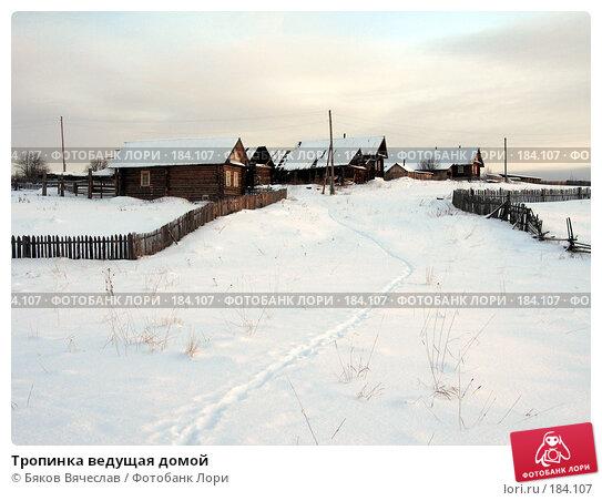 Тропинка ведущая домой, фото № 184107, снято 3 января 2008 г. (c) Бяков Вячеслав / Фотобанк Лори