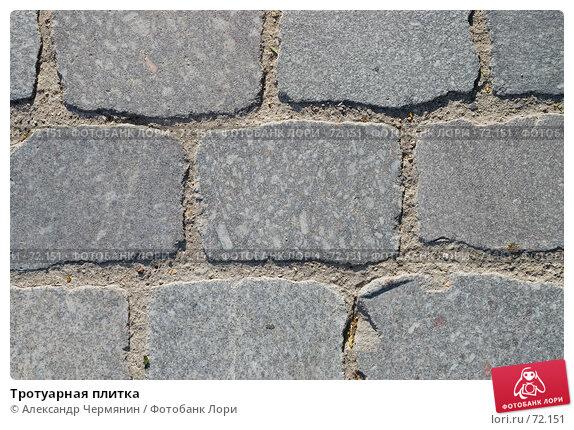 Тротуарная плитка, фото № 72151, снято 22 июля 2007 г. (c) Александр Чермянин / Фотобанк Лори