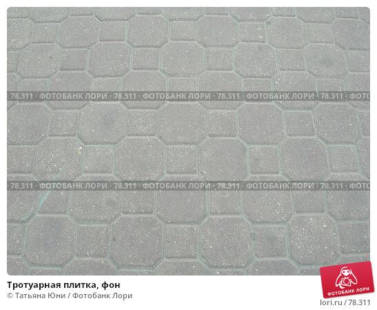 Тротуарная плитка, фон, эксклюзивное фото № 78311, снято 29 августа 2007 г. (c) Татьяна Юни / Фотобанк Лори