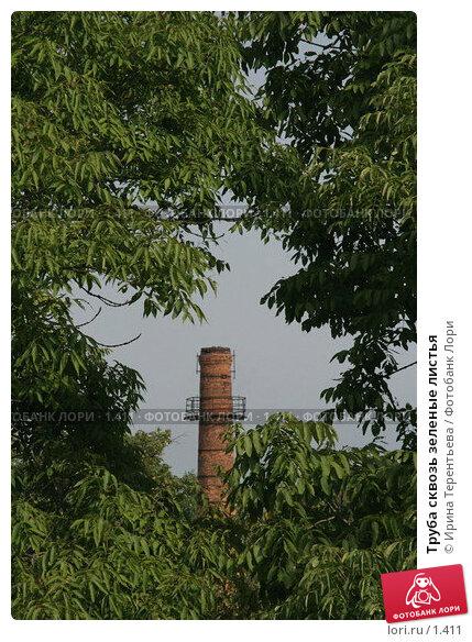 Труба сквозь зеленые листья, эксклюзивное фото № 1411, снято 18 сентября 2005 г. (c) Ирина Терентьева / Фотобанк Лори