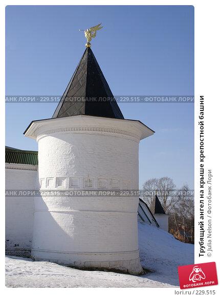 Купить «Трубящий ангел на крыше крепостной башни», фото № 229515, снято 11 марта 2008 г. (c) Julia Nelson / Фотобанк Лори