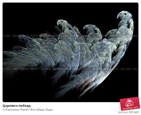 Купить «Царевна лебедь», иллюстрация № 231423 (c) Parmenov Pavel / Фотобанк Лори