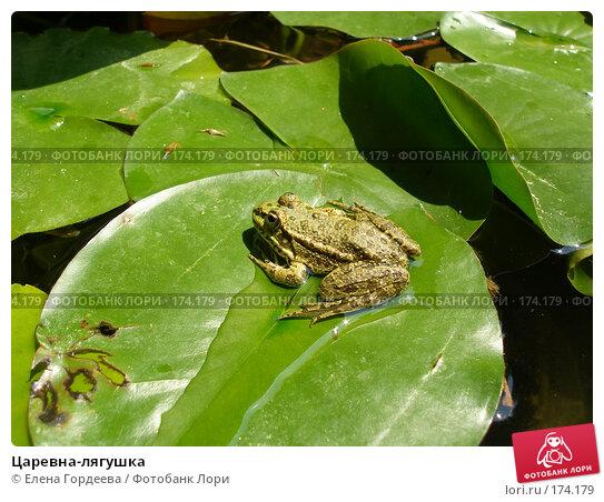 Царевна-лягушка, фото № 174179, снято 24 июля 2006 г. (c) Елена Гордеева / Фотобанк Лори