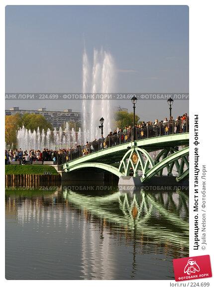 Царицино. Мост и танцующие фонтаны, фото № 224699, снято 23 сентября 2007 г. (c) Julia Nelson / Фотобанк Лори