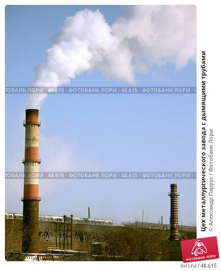 Цех металлургического завода с дымящими трубами, фото № 48615, снято 23 января 2006 г. (c) Александр Паррус / Фотобанк Лори