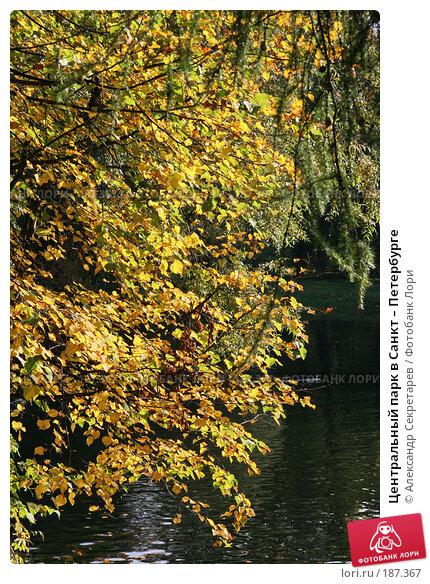 Центральный парк в Санкт – Петербурге, фото № 187367, снято 30 сентября 2007 г. (c) Александр Секретарев / Фотобанк Лори