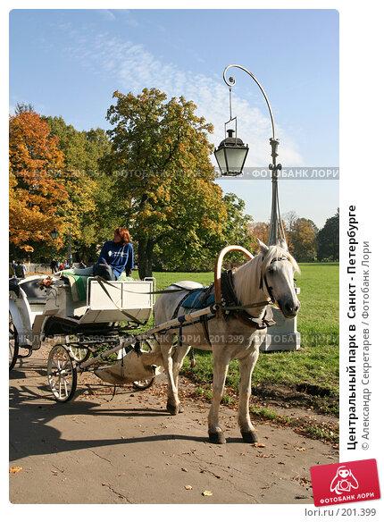 Купить «Центральный парк в  Санкт - Петербурге», фото № 201399, снято 30 сентября 2007 г. (c) Александр Секретарев / Фотобанк Лори