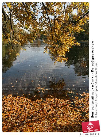 Центральный парк в Санкт – Петербурге осенью, фото № 197115, снято 30 сентября 2007 г. (c) Александр Секретарев / Фотобанк Лори