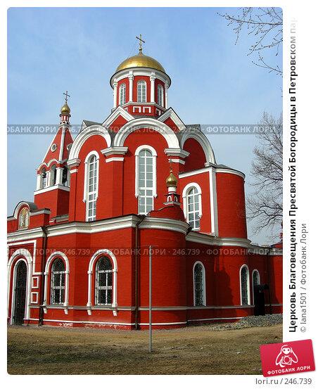 Церковь Благовещения Пресвятой Богородицы в Петровском парке в Москве, эксклюзивное фото № 246739, снято 7 апреля 2008 г. (c) lana1501 / Фотобанк Лори