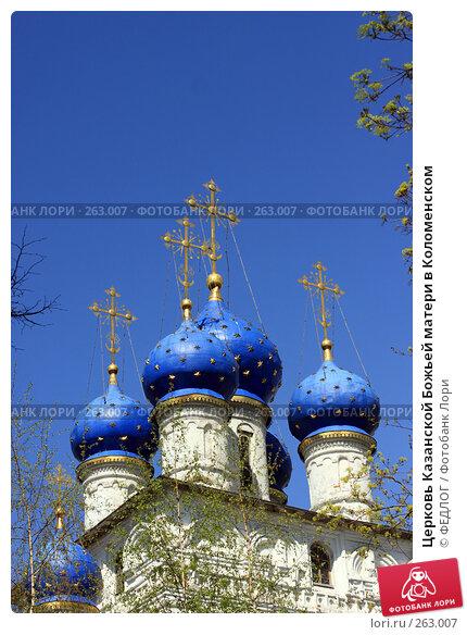 Купить «Церковь Казанской Божьей матери в Коломенском», фото № 263007, снято 26 апреля 2008 г. (c) ФЕДЛОГ.РФ / Фотобанк Лори