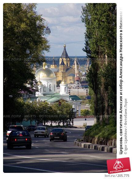 Церковь святителя Алексия и собор Александра Невского в Нижнем Новгороде, фото № 205775, снято 18 сентября 2007 г. (c) Igor Lijashkov / Фотобанк Лори
