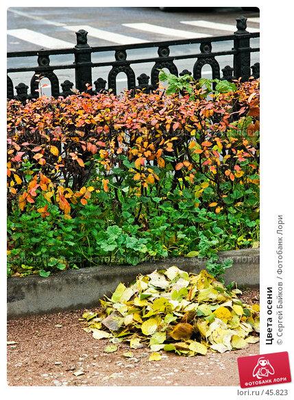Купить «Цвета осени», фото № 45823, снято 24 октября 2004 г. (c) Сергей Байков / Фотобанк Лори