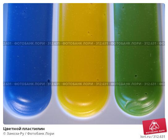 Цветной пластилин, фото № 312631, снято 3 июня 2008 г. (c) Заноза-Ру / Фотобанк Лори