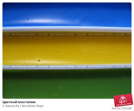Цветной пластилин, фото № 312635, снято 3 июня 2008 г. (c) Заноза-Ру / Фотобанк Лори
