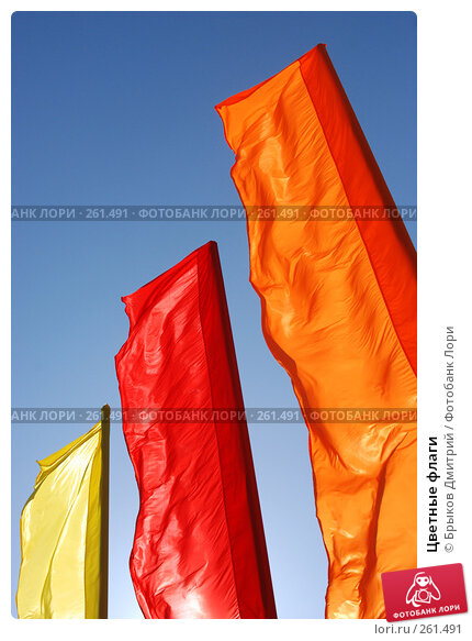 Цветные флаги, фото № 261491, снято 24 апреля 2008 г. (c) Брыков Дмитрий / Фотобанк Лори