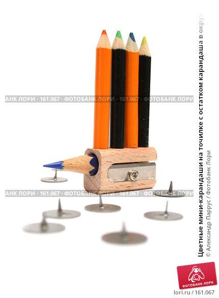 Цветные мини-карандаши на точилке с остатком карандаша в окружении канцелярских кнопок, фото № 161067, снято 10 октября 2006 г. (c) Александр Паррус / Фотобанк Лори