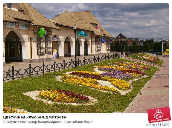 Цветочная клумба в Дмитрове, фото № 311099, снято 30 мая 2008 г. (c) Окунев Александр Владимирович / Фотобанк Лори