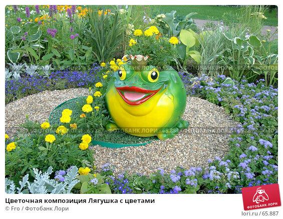 Цветочная композиция Лягушка с цветами, фото № 65887, снято 14 июля 2007 г. (c) Fro / Фотобанк Лори