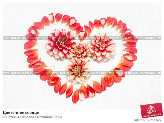 Купить «Цветочное сердце», фото № 12714027, снято 19 сентября 2015 г. (c) Наталья Осипова / Фотобанк Лори
