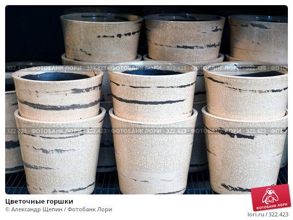 Купить «Цветочные горшки», эксклюзивное фото № 322423, снято 8 июня 2008 г. (c) Александр Щепин / Фотобанк Лори