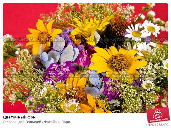 Цветочный фон, фото № 268499, снято 1 августа 2004 г. (c) Кравецкий Геннадий / Фотобанк Лори