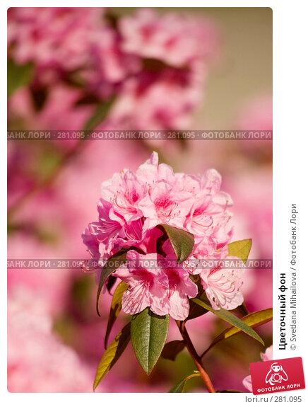 Купить «Цветочный фон», фото № 281095, снято 11 мая 2008 г. (c) Svetlana Mihailova / Фотобанк Лори
