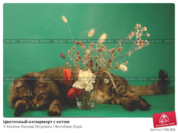 Цветочный натюрморт с котом, фото № 144463, снято 11 декабря 2007 г. (c) Коннов Леонид Петрович / Фотобанк Лори