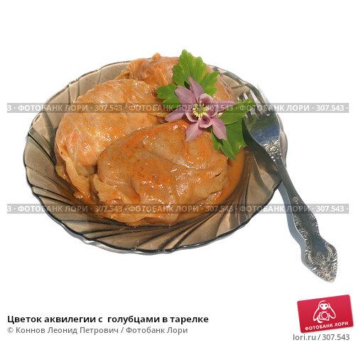Цветок аквилегии с  голубцами в тарелке, фото № 307543, снято 2 июня 2008 г. (c) Коннов Леонид Петрович / Фотобанк Лори