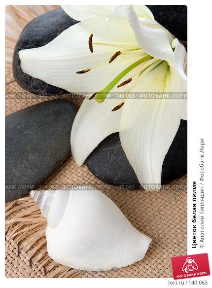 Цветок белая лилия, фото № 140063, снято 27 июня 2007 г. (c) Анатолий Типляшин / Фотобанк Лори