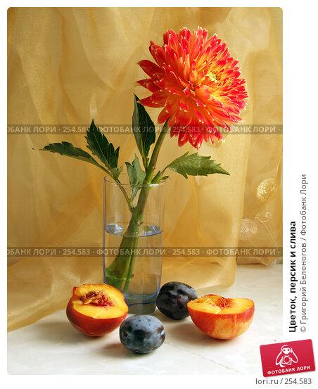 Цветок, персик и слива, фото № 254583, снято 29 июля 2007 г. (c) Григорий Белоногов / Фотобанк Лори