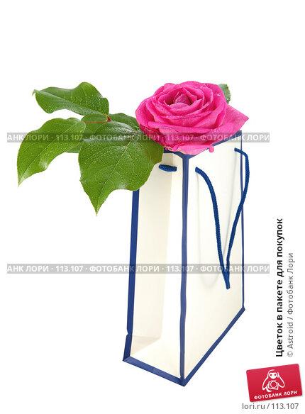 Цветок в пакете для покупок, фото № 113107, снято 14 апреля 2007 г. (c) Astroid / Фотобанк Лори