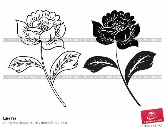 Цветы, иллюстрация № 63755 (c) Сергей Лаврентьев / Фотобанк Лори