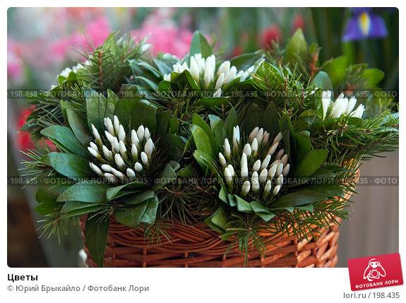 Купить «Цветы», фото № 198435, снято 3 февраля 2008 г. (c) Юрий Брыкайло / Фотобанк Лори