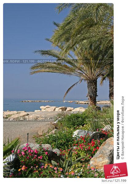 Цветы и пальмы у моря, фото № 121199, снято 22 августа 2007 г. (c) Валерий Торопов / Фотобанк Лори