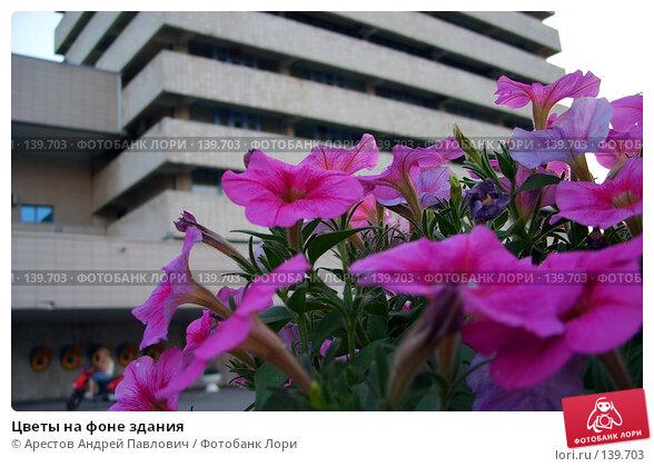 Цветы на фоне здания, фото № 139703, снято 2 августа 2007 г. (c) Арестов Андрей Павлович / Фотобанк Лори