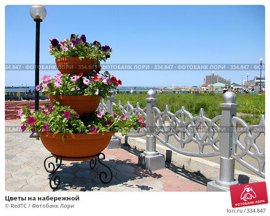 Купить «Цветы на набережной», фото № 334847, снято 24 июня 2008 г. (c) RedTC / Фотобанк Лори