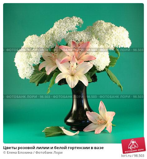 Цветы розовой лилии и белой гортензии в вазе, фото № 98503, снято 11 июля 2007 г. (c) Елена Блохина / Фотобанк Лори