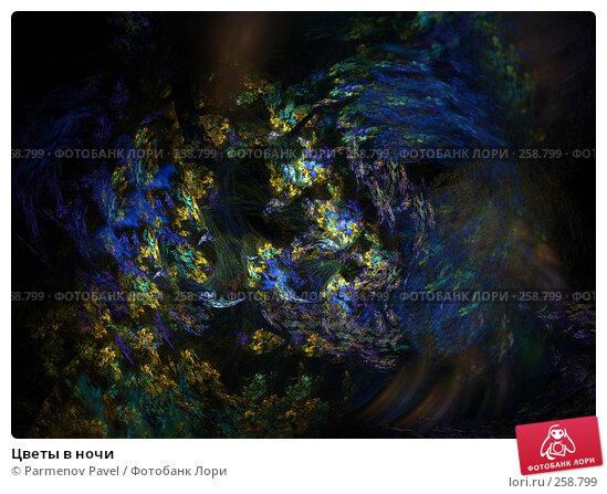 Купить «Цветы в ночи», иллюстрация № 258799 (c) Parmenov Pavel / Фотобанк Лори