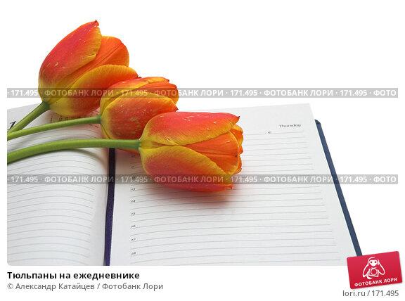 Тюльпаны на ежедневнике, фото № 171495, снято 25 апреля 2007 г. (c) Александр Катайцев / Фотобанк Лори