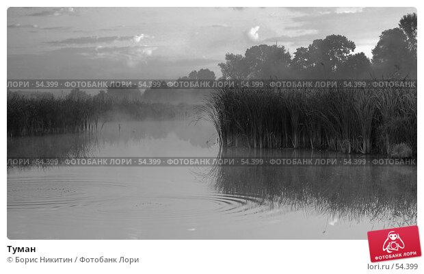 Туман, фото № 54399, снято 28 мая 2017 г. (c) Борис Никитин / Фотобанк Лори
