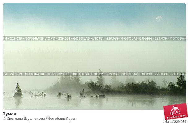 Купить «Туман», фото № 229039, снято 22 августа 2005 г. (c) Светлана Шушпанова / Фотобанк Лори