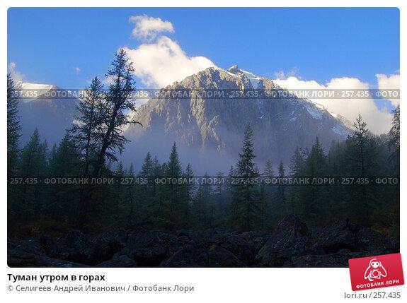 Купить «Туман утром в горах», фото № 257435, снято 26 августа 2007 г. (c) Селигеев Андрей Иванович / Фотобанк Лори