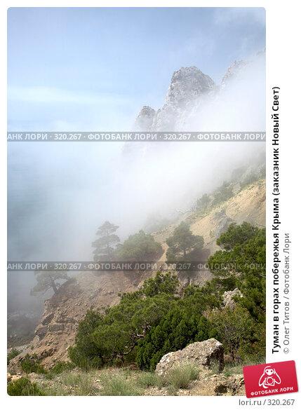 Туман в горах побережья Крыма (заказник Новый Свет), фото № 320267, снято 21 мая 2008 г. (c) Олег Титов / Фотобанк Лори