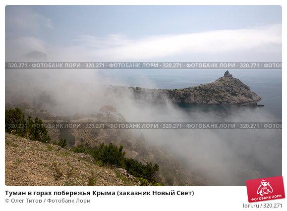 Туман в горах побережья Крыма (заказник Новый Свет), фото № 320271, снято 21 мая 2008 г. (c) Олег Титов / Фотобанк Лори