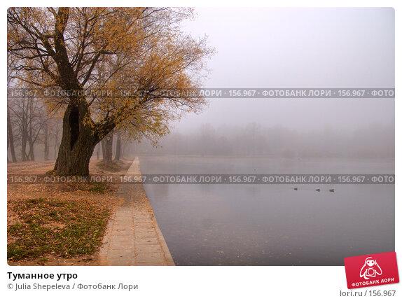 Туманное утро, фото № 156967, снято 10 декабря 2016 г. (c) Julia Shepeleva / Фотобанк Лори