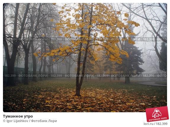 Туманное утро, фото № 182399, снято 25 октября 2007 г. (c) Igor Lijashkov / Фотобанк Лори