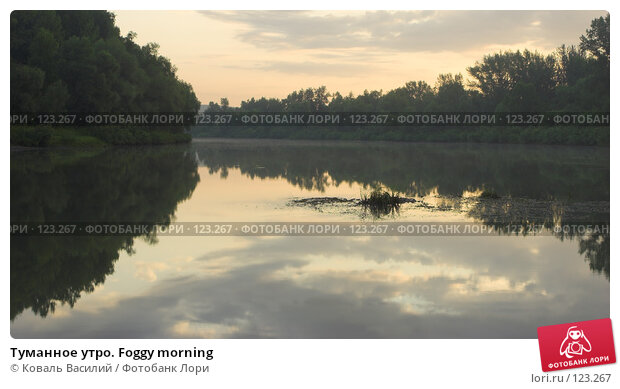 Купить «Туманное утро. Foggy morning», фото № 123267, снято 24 ноября 2017 г. (c) Коваль Василий / Фотобанк Лори