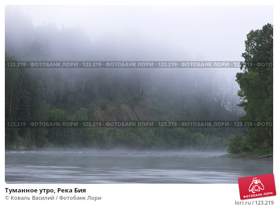Купить «Туманное утро, Река Бия», фото № 123219, снято 13 декабря 2017 г. (c) Коваль Василий / Фотобанк Лори
