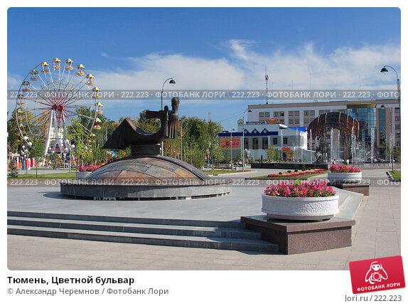 Тюмень, Цветной бульвар, фото № 222223, снято 10 августа 2006 г. (c) Александр Черемнов / Фотобанк Лори